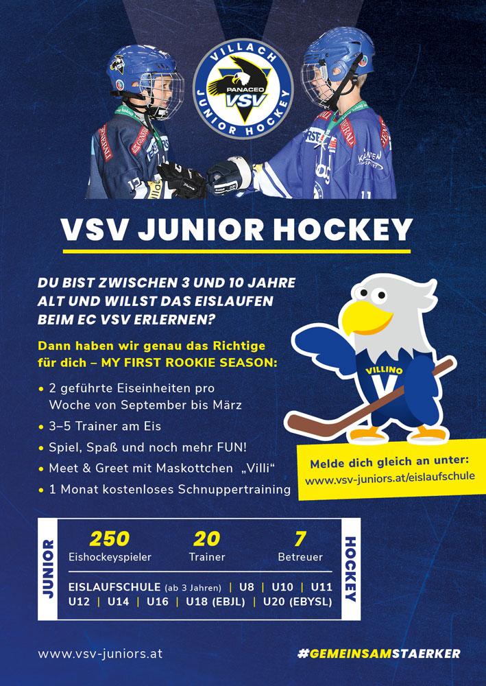 VSV Eislaufschule